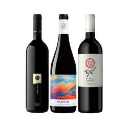 סט יינות ישראלים אדומים 1